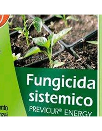 Bayer previcur energy fungicida sistemico