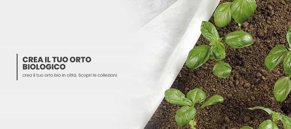 piante-da-orto-e-frutto